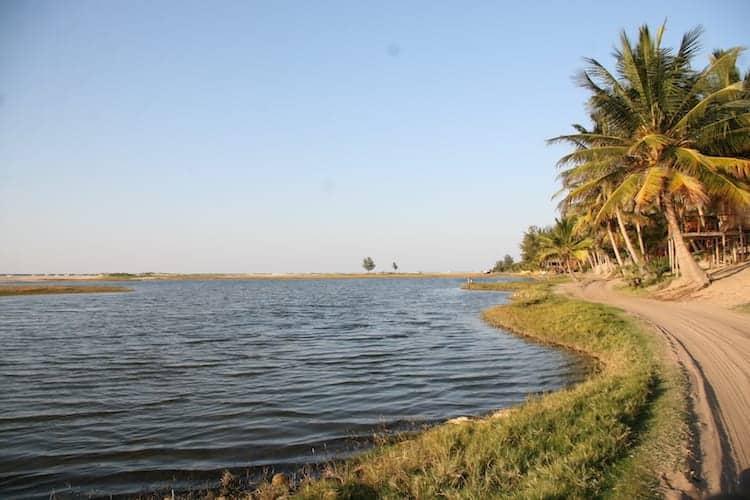Estuary in Mozambique