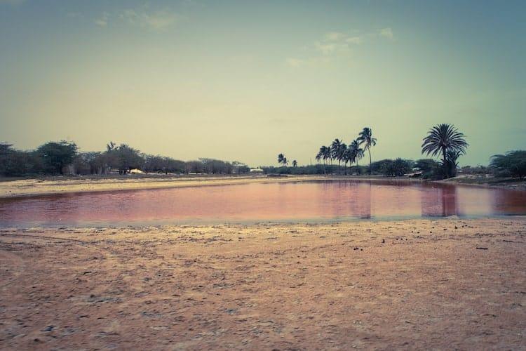 Muddy wetland in Senegal