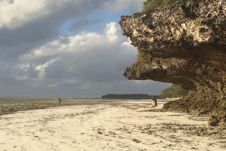 Rock ledge on the beach