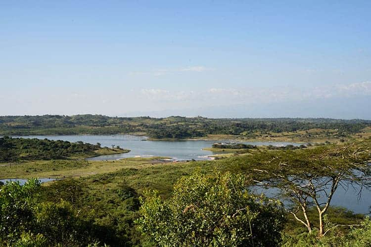 Wetlands, Tanzania