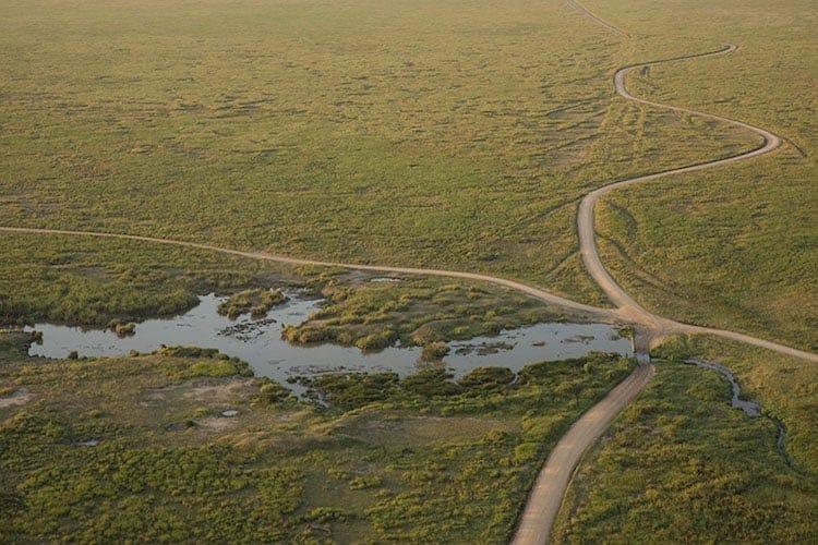 Aerial wetland view, Tanzania